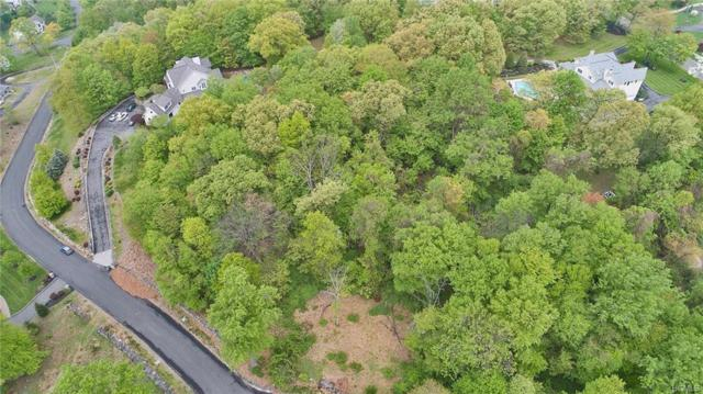 4 Perrins Peak Road, Stony Point, NY 10980 (MLS #4821051) :: Stevens Realty Group
