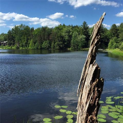 Lot 18.24 Beaver Dam Road, Bethel, NY 12720 (MLS #4821332) :: Mark Seiden Real Estate Team