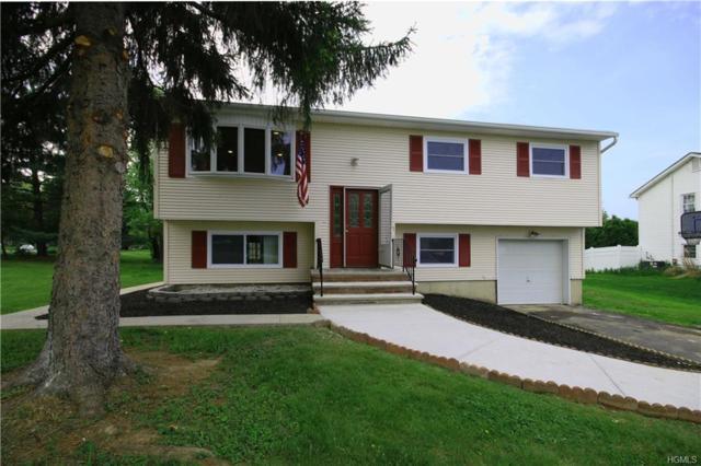 1 Pilgrim Lane, Washingtonville, NY 10992 (MLS #4821905) :: Stevens Realty Group