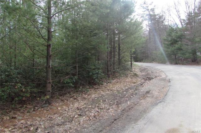 0 Mountain Top Road, Wurtsboro, NY 12790 (MLS #4822415) :: Mark Seiden Real Estate Team