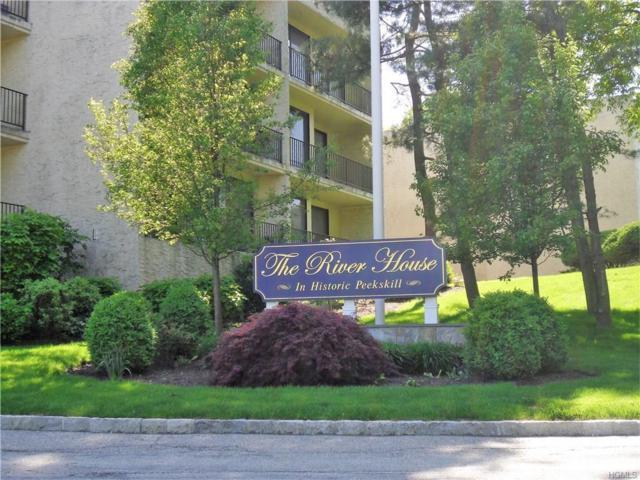 150 Overlook Avenue 6T, Peekskill, NY 10566 (MLS #4822829) :: William Raveis Baer & McIntosh