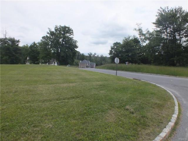 5 Heidi Lane, Chester, NY 10918 (MLS #4824837) :: Shares of New York