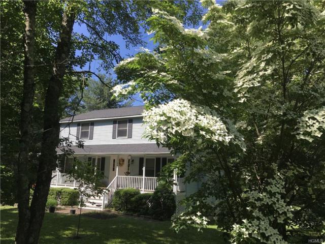 246 S Greenbush Road, Orangeburg, NY 10962 (MLS #4826536) :: William Raveis Baer & McIntosh