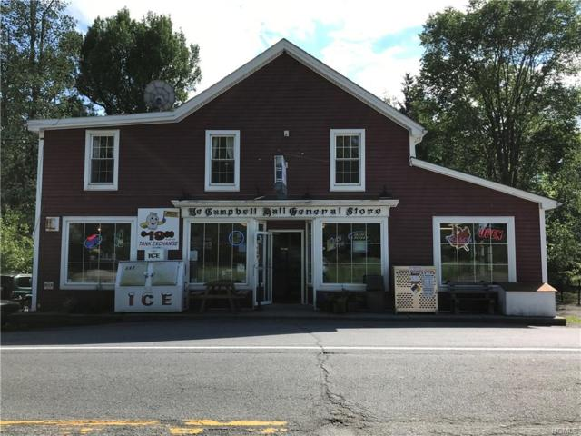 2823 State Route 207, Campbell Hall, NY 10916 (MLS #4826658) :: William Raveis Baer & McIntosh