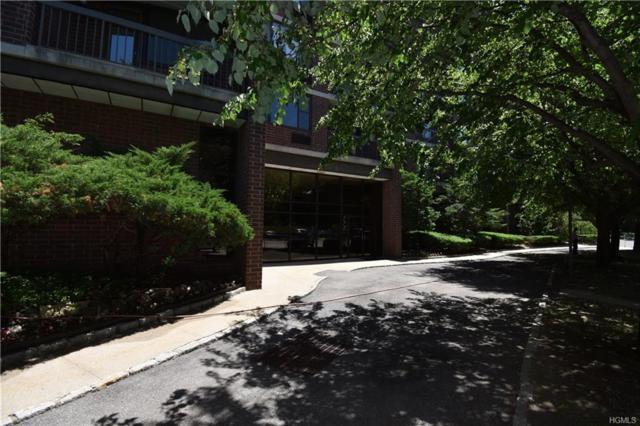 777 N Macquesten Parkway #503, Mount Vernon, NY 10552 (MLS #4827256) :: Mark Seiden Real Estate Team