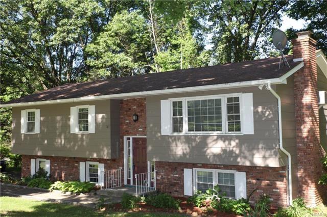 29 Fox Hill Road, Wallkill, NY 12589 (MLS #4829104) :: William Raveis Baer & McIntosh