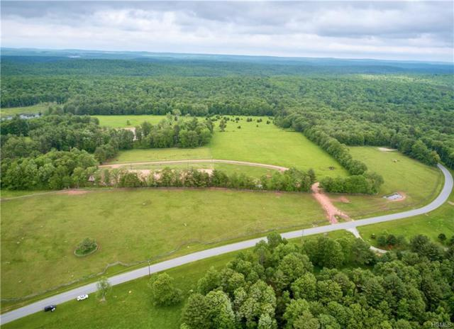Lot 5 Chapin Trail, Bethel, NY 12720 (MLS #4829409) :: Mark Boyland Real Estate Team
