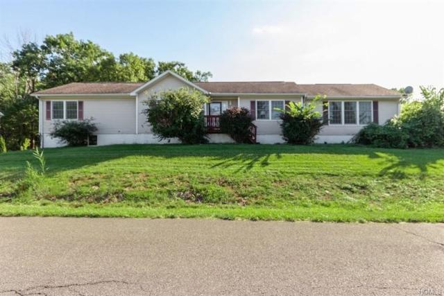 2 Alder Court, Kingston, NY 12401 (MLS #4830416) :: Shares of New York