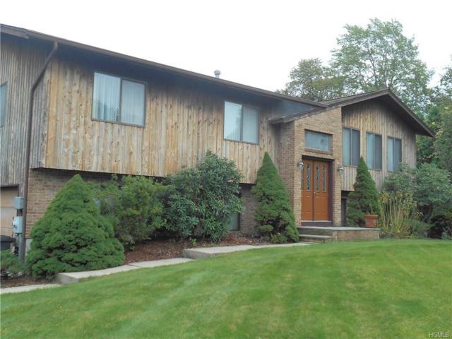 11 Weiss Terrace, Chestnut Ridge, NY 10977 (MLS #4830901) :: William Raveis Baer & McIntosh