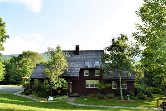 51 Sugar Bush Road, Livingston Manor, NY 12758 (MLS #4831185) :: Mark Seiden Real Estate Team