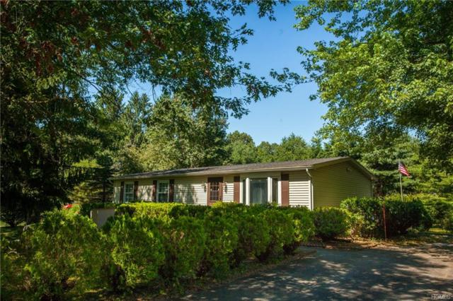 240 Neversink Drive, Port Jervis, NY 12771 (MLS #4831470) :: Mark Seiden Real Estate Team