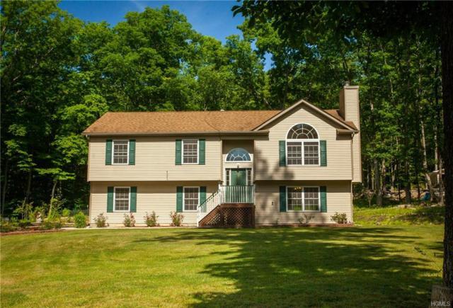 223 County Hwy 61, Westbrookville, NY 12785 (MLS #4831620) :: Mark Seiden Real Estate Team