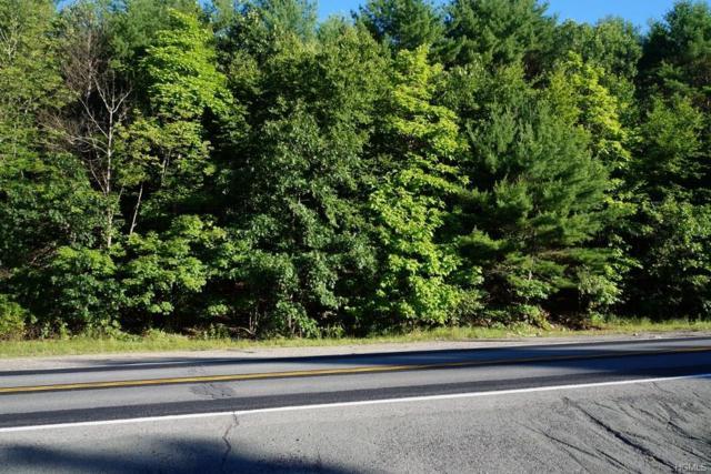 1346 Us Route 209, Cuddebackville, NY 12729 (MLS #4832091) :: Michael Edmond Team at Keller Williams NY Realty