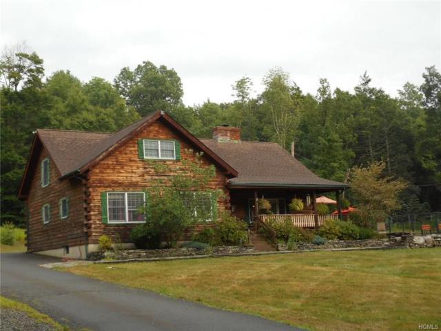88 Old Cahoonzie Road, Sparrowbush, NY 12780 (MLS #4832529) :: Mark Seiden Real Estate Team