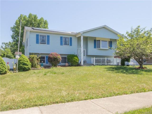 8 Woodstock Lane, Middletown, NY 10941 (MLS #4832993) :: Mark Seiden Real Estate Team
