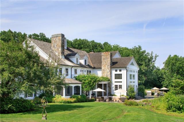 117 W Patent Road, Bedford Hills, NY 10507 (MLS #4833396) :: Mark Boyland Real Estate Team