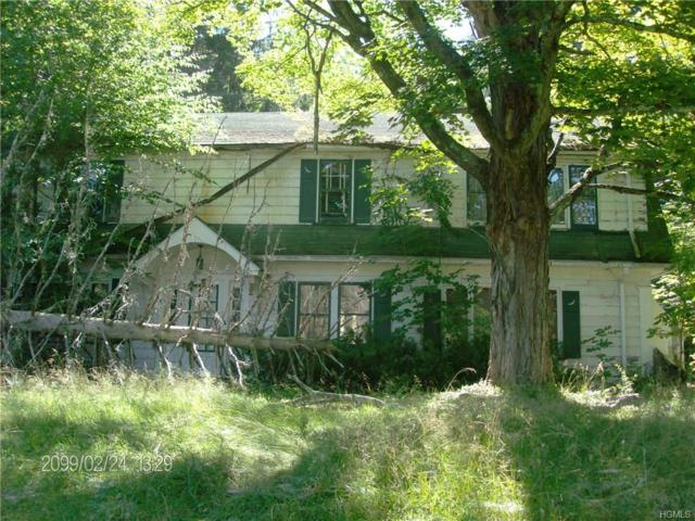 78 Rockland Road, Roscoe, NY 12776 (MLS #4833451) :: Mark Seiden Real Estate Team