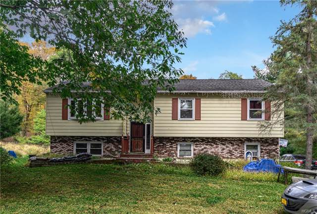 113 Benton Moore Road, Hopewell Junction, NY 12533 (MLS #H4833513) :: The Home Team