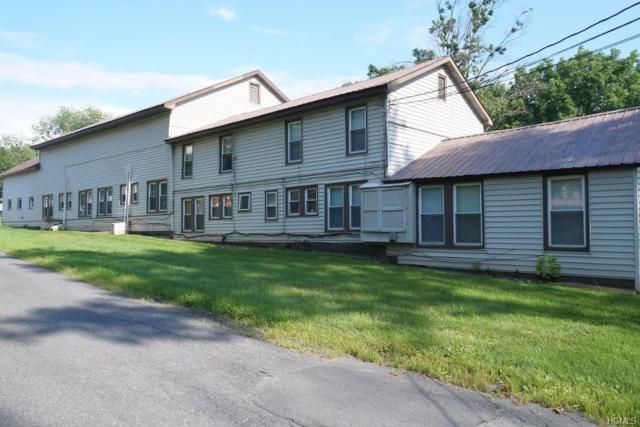 330 State Route 55, Napanoch, NY 12458 (MLS #4835304) :: Michael Edmond Team at Keller Williams NY Realty
