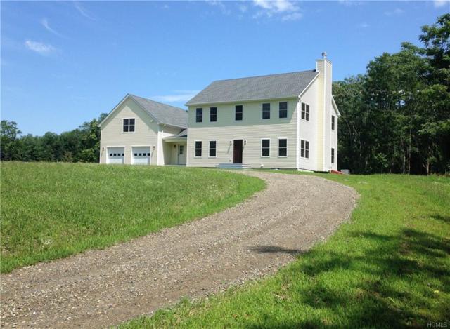 428 Hapeman Hill Road, Red Hook, NY 12571 (MLS #4835433) :: Mark Seiden Real Estate Team
