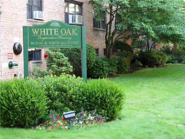 61 White Oak Street 2-G, New Rochelle, NY 10801 (MLS #4836049) :: William Raveis Legends Realty Group