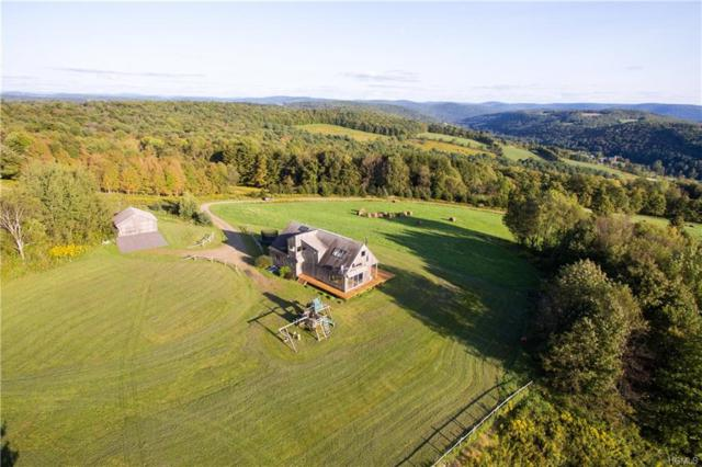 4358 Cty Hwy 23, Walton, NY 13856 (MLS #4836153) :: Mark Seiden Real Estate Team