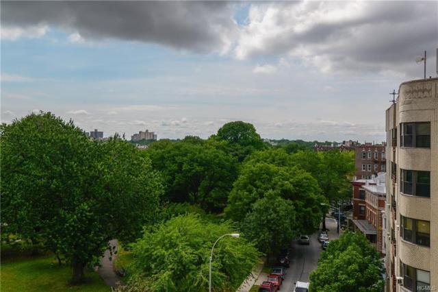 190 E Mosholu Parkway 3-F, Bronx, NY 10458 (MLS #4836668) :: Mark Boyland Real Estate Team