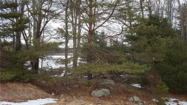1245 Sackett Lake Road, Forestburgh, NY 12777 (MLS #4836681) :: Mark Boyland Real Estate Team