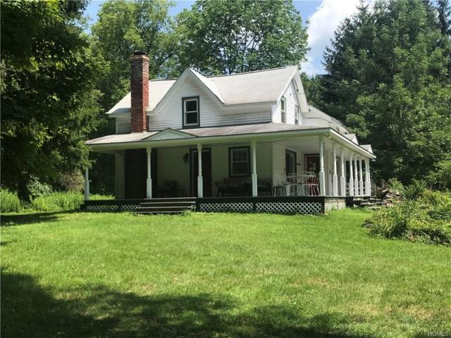 2600 Holiday & Berry Brook, Roscoe, NY 12776 (MLS #4836992) :: William Raveis Legends Realty Group
