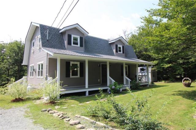 728 Stump Pond Road, Livingston Manor, NY 12758 (MLS #4837856) :: Stevens Realty Group