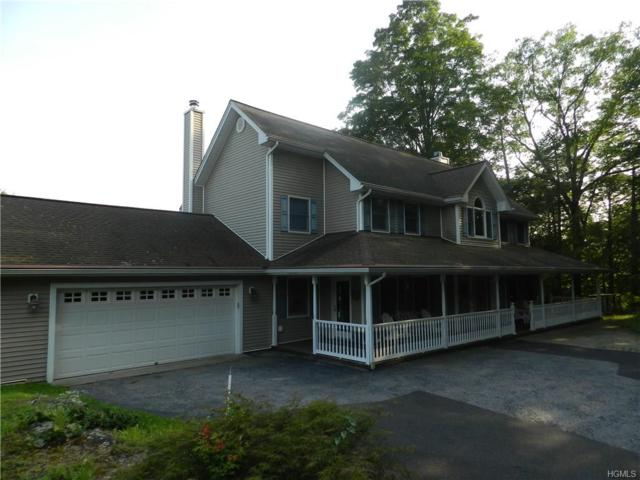 74 Glen Avenue, Dover Plains, NY 12522 (MLS #4838981) :: Stevens Realty Group