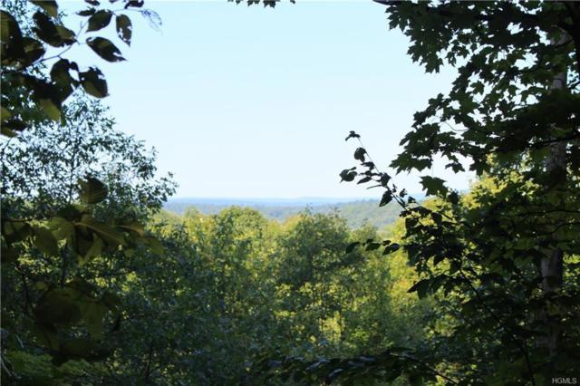 TBD Lake View Terrace, Kingston, NY 12401 (MLS #4839965) :: Shares of New York