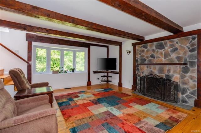 762 Route 343, Millbrook, NY 12545 (MLS #4840066) :: Shares of New York