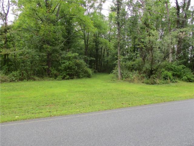 120 Bates Gates Road, New Hampton, NY 10958 (MLS #4841014) :: Mark Boyland Real Estate Team