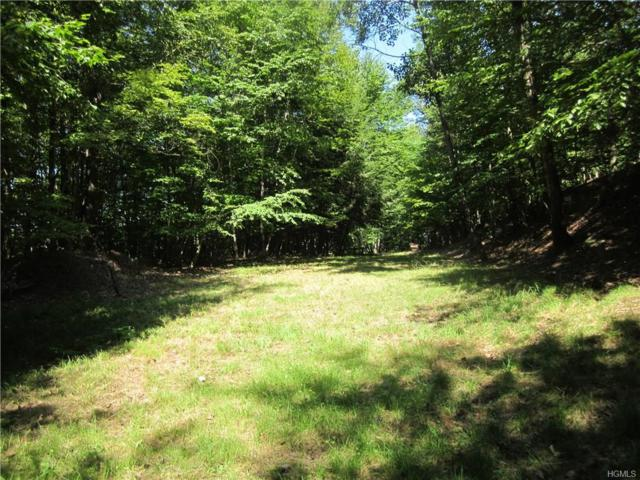 173 Hust Road, North Branch, NY 12766 (MLS #4842349) :: Shares of New York