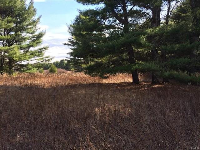 Co Road 23, Narrowsburg, NY 12764 (MLS #4842498) :: William Raveis Legends Realty Group