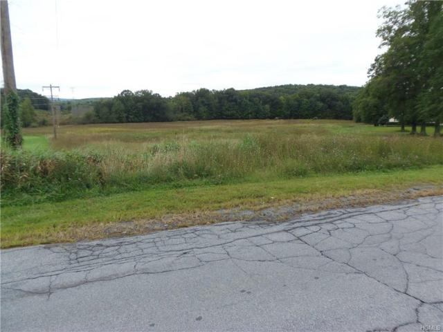 30-32 Fox Hollow Drive, Blooming Grove, NY 10914 (MLS #4842680) :: William Raveis Baer & McIntosh