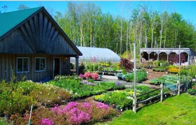 3195 State Route 52, White Sulphur Spring, NY 12787 (MLS #4843035) :: Shares of New York