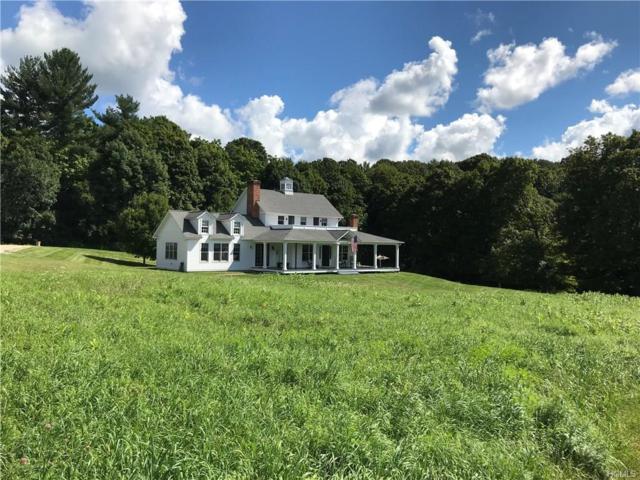 314 South Road, Millbrook, NY 12545 (MLS #4843372) :: Mark Seiden Real Estate Team