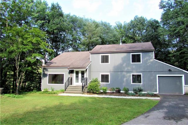 9 Glen Court, Pawling, NY 12564 (MLS #4843559) :: Stevens Realty Group