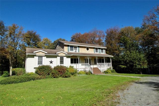 701 Stump Pond Road, Livingston Manor, NY 12758 (MLS #4844962) :: William Raveis Legends Realty Group