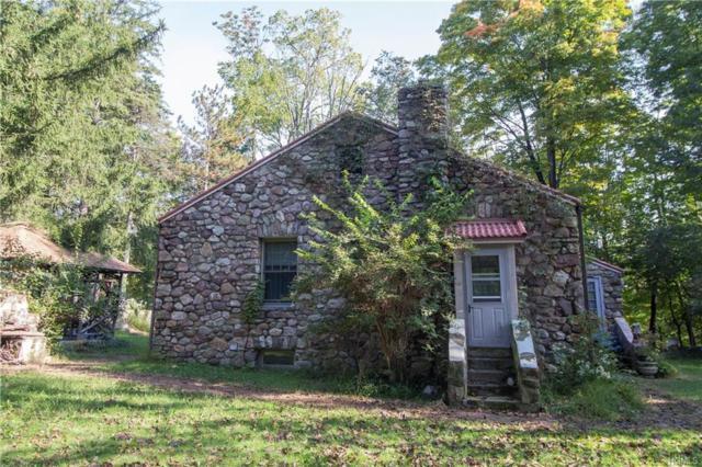 44 Eagle Street, Monroe Town, NY 10950 (MLS #H4845460) :: Cronin & Company Real Estate