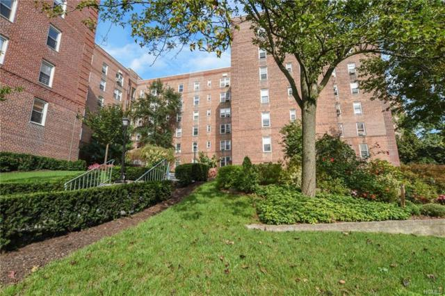 5650 Netherland Avenue 3C, Bronx, NY 10471 (MLS #4845957) :: William Raveis Legends Realty Group