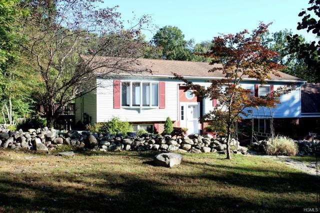 64 Stonybrook Road, Pine Bush, NY 12566 (MLS #4846655) :: The McGovern Caplicki Team