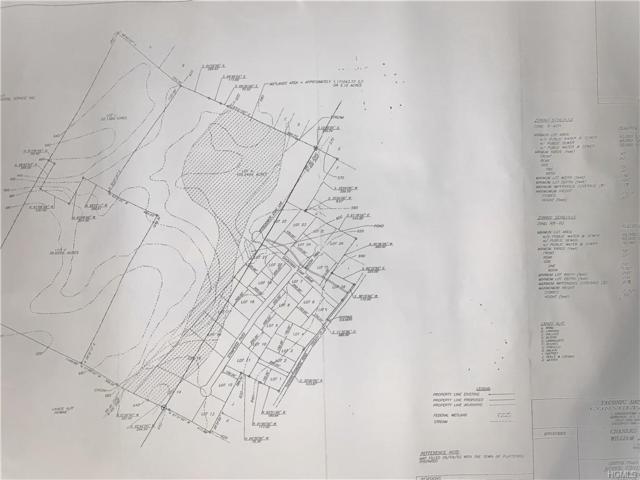 Tuckers Corners Road, Plattekill, NY 12568 (MLS #H4846741) :: William Raveis Baer & McIntosh