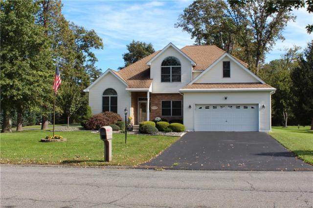 204 Old Castle Point Road, Wappingers Falls, NY 12590 (MLS #4846832) :: William Raveis Legends Realty Group