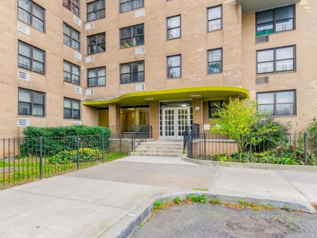 1966 Newbold Avenue #1504, Bronx, NY 10472 (MLS #4847866) :: William Raveis Legends Realty Group
