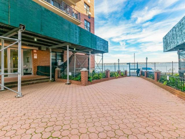 1130 Stadium Avenue 5G, Bronx, NY 10465 (MLS #4848748) :: Mark Boyland Real Estate Team