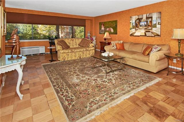 15 Stewart Place 4D, White Plains, NY 10603 (MLS #4849266) :: William Raveis Baer & McIntosh