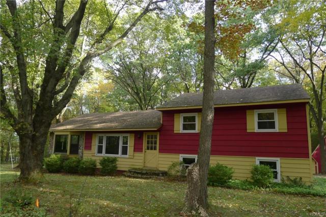 11 Cozy Lane, Warwick, NY 10990 (MLS #4849322) :: William Raveis Baer & McIntosh